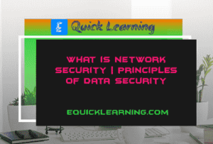 What is Network Security? | Principles of Data Security